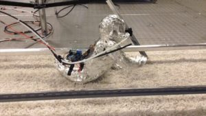Video Friday: Crawling Baby Robot, Tethered Drone, and New Intel RealSense