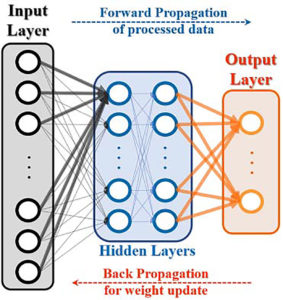 Searching for the Perfect Neuron for AI