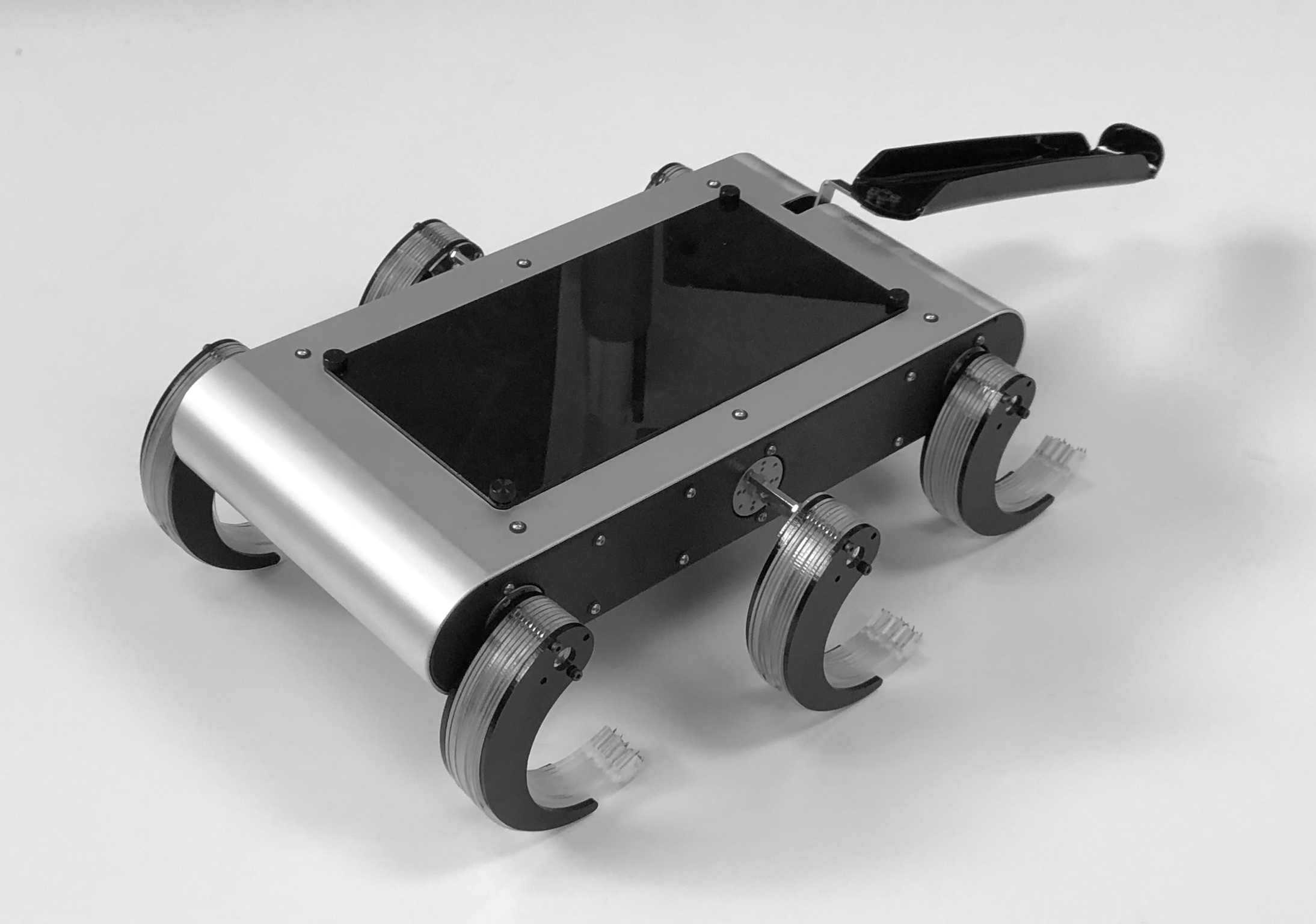 T-RHex is a hexapod robot with spiky feet and a tail